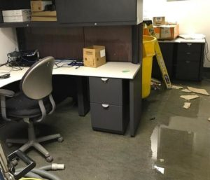 Water Damage Office